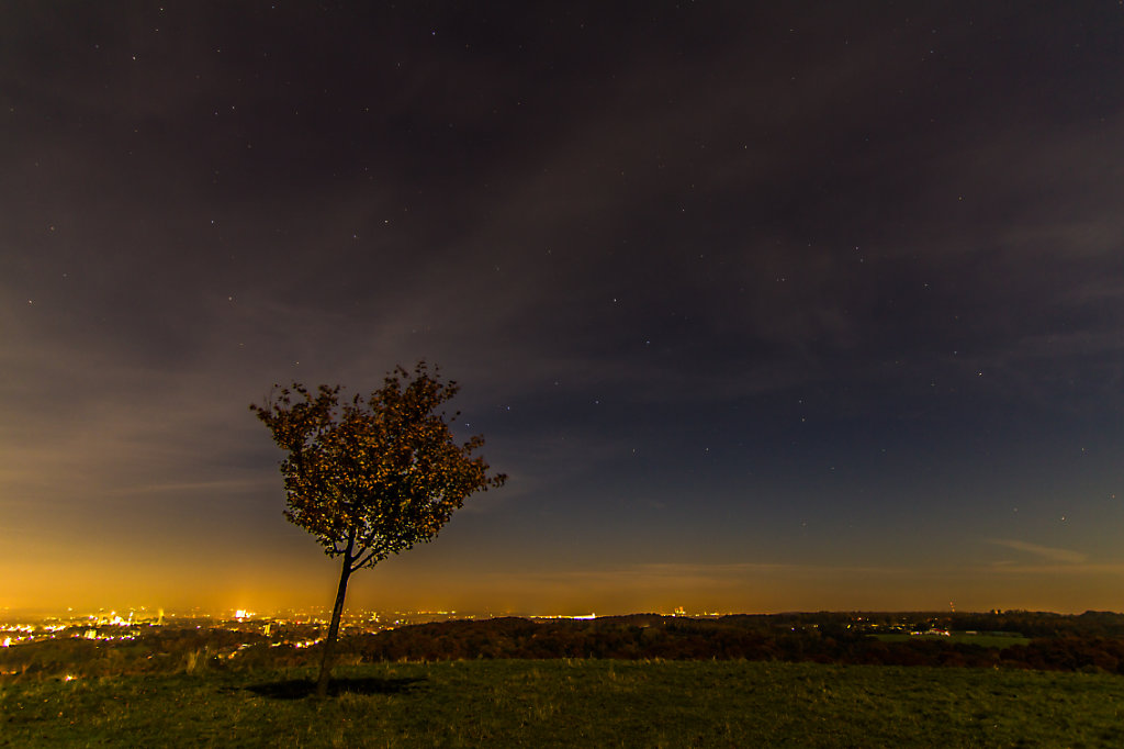 Tippelsberg by night
