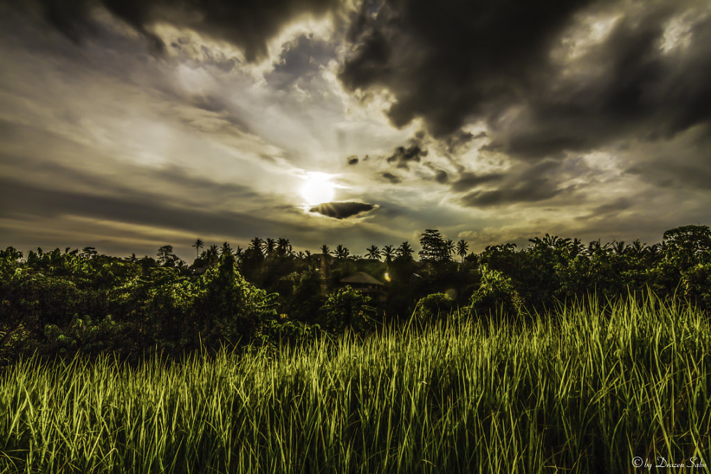 sunset in ubud